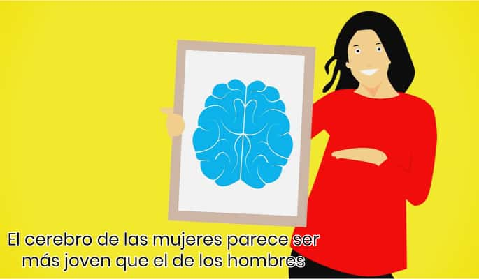 Cerebro de mujeres más joven que hombres